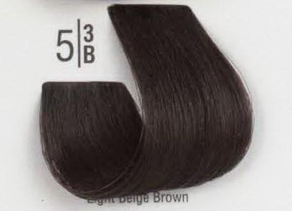 5/3B Светлый бежевый шатен SPA Cream Color Профессиональный краситель для волос